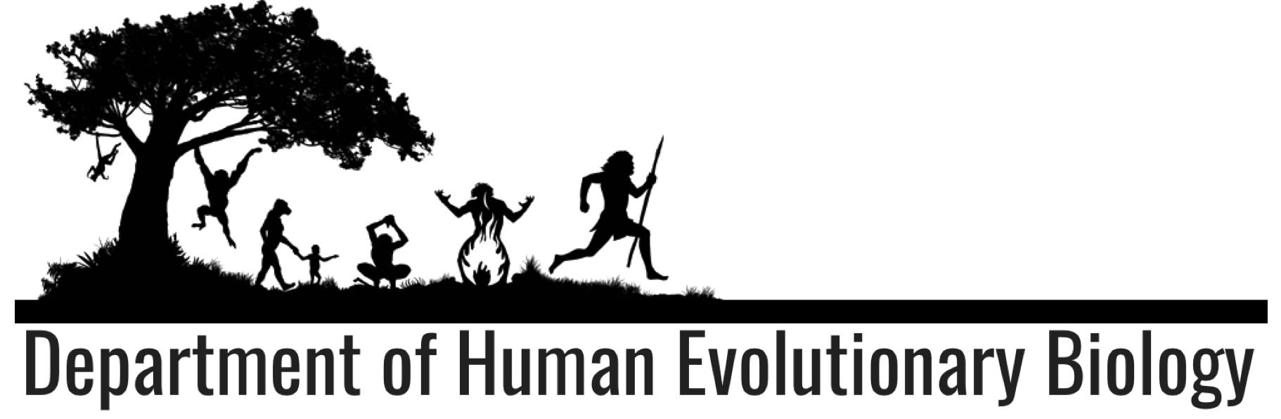 Department of Human Evolutionary Biology